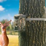 WingHome Wildlife Trail Camera Mounting Straps, Nylon Fiber Straps 2PCS