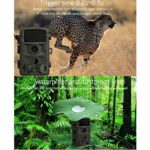 Hunting Trail Camera, 14MP HD Trail Game Camera with 2.4in LCD Screen, Infrared Night Vision, Motion Activated, IP65 Waterproof Wild Animal Tracking Detection