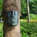 ARTITAN Trail Camera 12MP Game Hunting Cam Motion Activated Night Vision 65ft/20m No Glow IR LEDs IP65 Waterproof for Wildlife Scounting Home Security Outdoor Surveillance