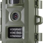 Primos 6MP Bullet Proof Trail Camera with Low Glow LED, Green