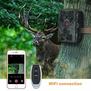 RINKMO WiFi Trail Camera, 20MP 1080P HD Hunting Game Camera with Night Vision, 44pcs Infrared LED, 0.2s Motion Activated, IP66 Waterproof, Monitoring for Wildlife and Home Security… (Micro SD Card)