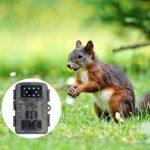 Yardwe 1080P Waterproof Hunting Camera Trail Camera USB HD Camera Without Battery