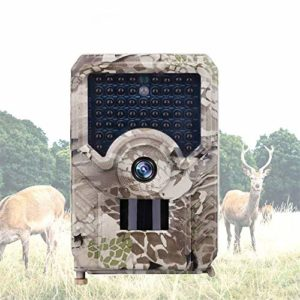 QARYYQ Wildlife Trail Camera Color Letter Trail Camera Infrared Night Vision Wildlife Reconnaissance Camera Hunting Camera Wild Animal Camera