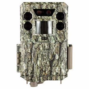 Bushnell 30MP CORE Trail Camera, Dual Sensor, no Glow_119977C