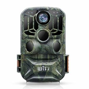 BZK Trail Game Camera – 24MP 1080P Waterproof Hunting Camera with Night Vision for Outdoor Wildlife Monitoring